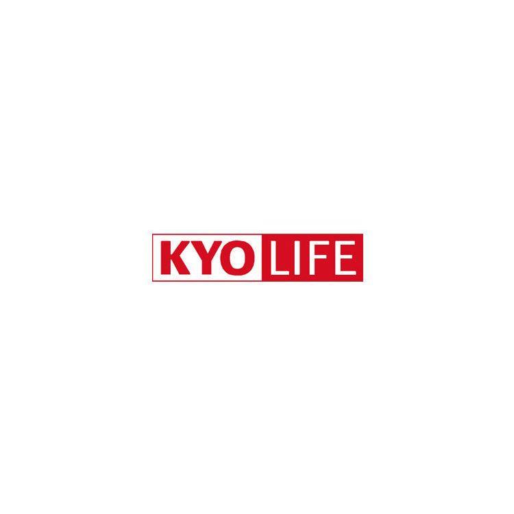 KYOCERA KYOlife, 4Y